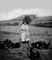 1930 farm and landscape with chickens